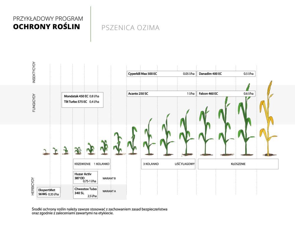 program ochrony roslin pszenica ozima