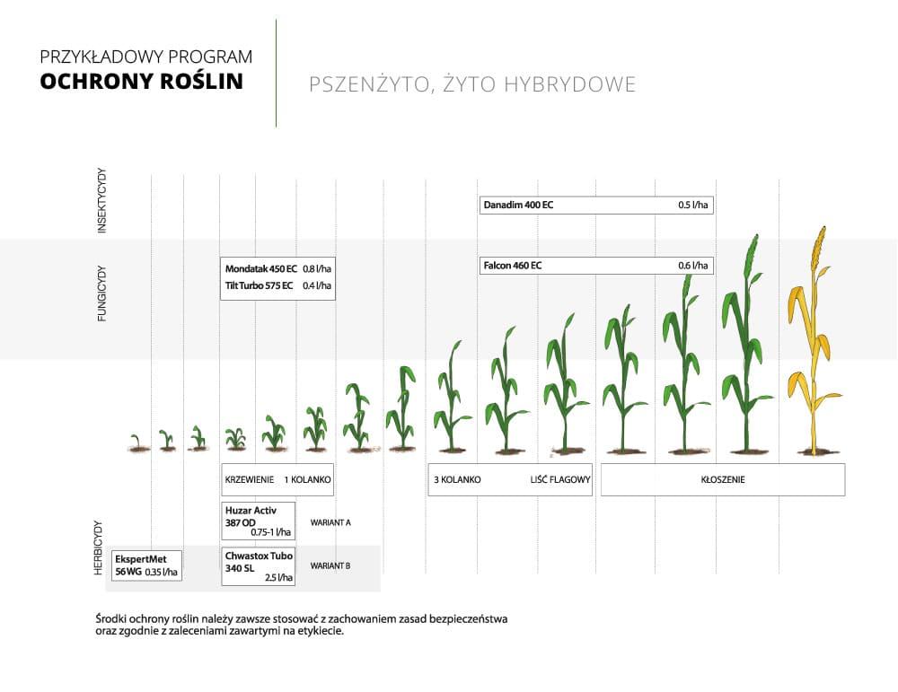 program ochrony roslin pszenzyto
